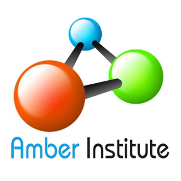 the Amber Institute Academy