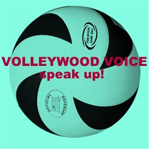 The Volleywood Voice