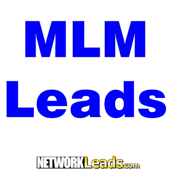 MLM Leads Training Peter Mingils
