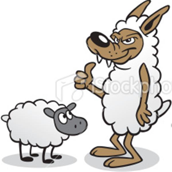 Wolfe and Sheep
