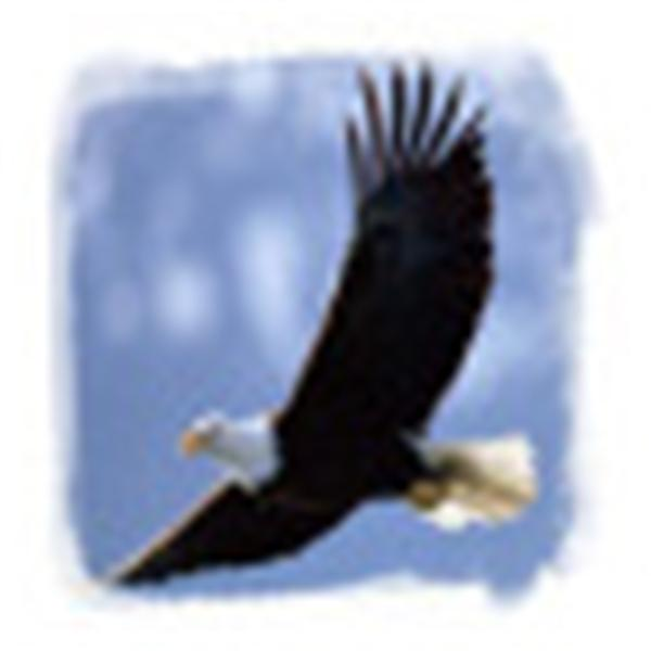 Eagles Fly High Ministries