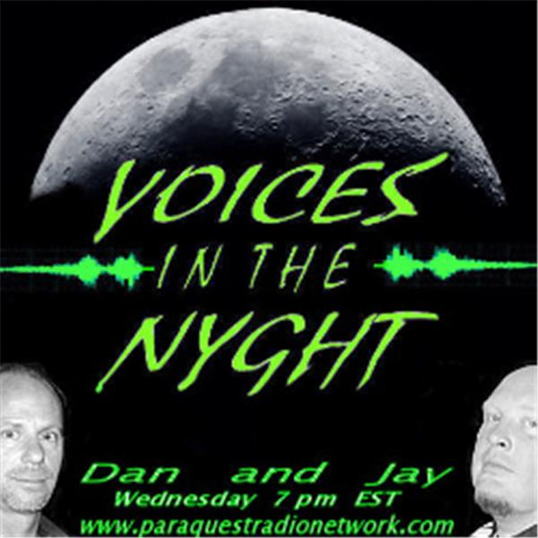 Voices in the NYGHT