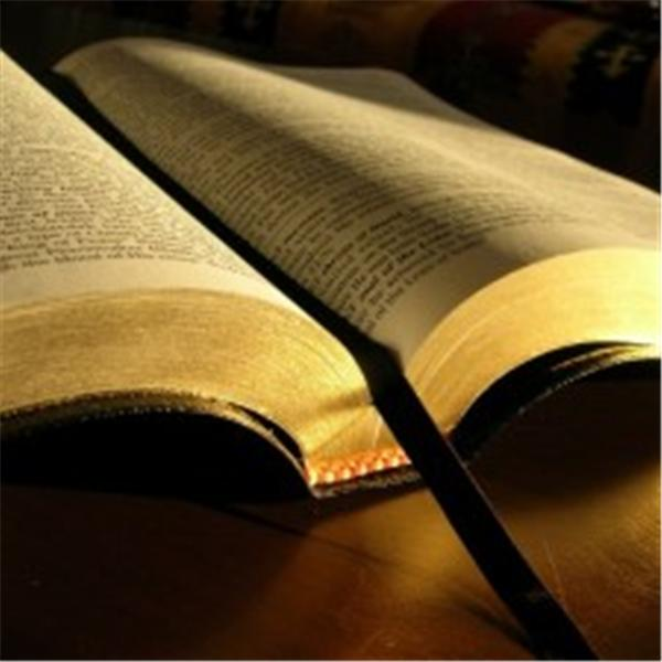 Bible Reading and Prayer