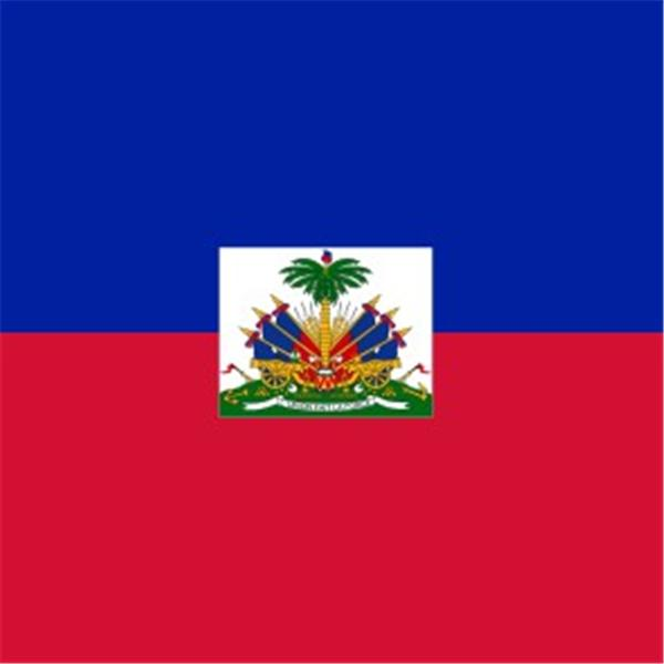 Haiti Diaspora Liaison Office