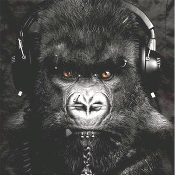 GORILLA RADIO NETWORK