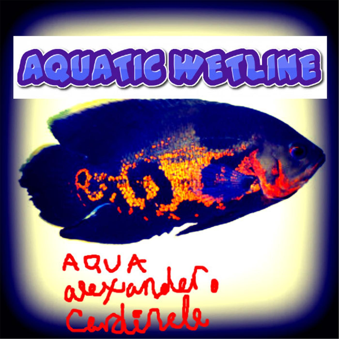 Aquatic Wetline with Aqua Alex