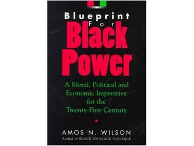 Blueprint for black power those 1st 6 chapters 0902 by kamau301 play amos wilson blueprint for black power malvernweather Images